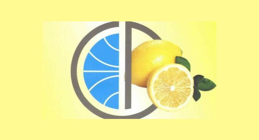limoni-africa-mission