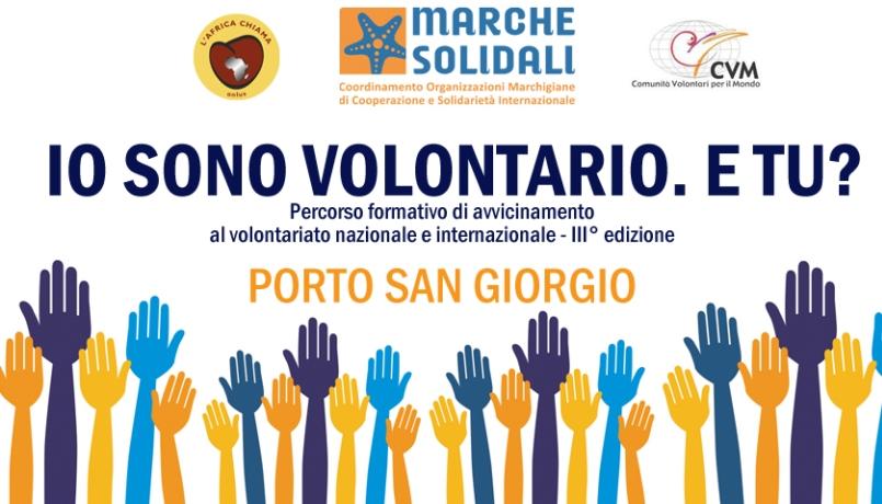 iovolontario_2015 (2)