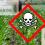 FOCSIV e oltre 80 ONG per bloccare la fusione tra Bayer e Monsanto