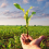 Diritto al cibo: l'appello del Relatore Speciale delle Nazioni Unite per porre fine all'Accordo sull'Agricoltura e per creare un nuovo sistema di commercio internazionale incentrato sul diritto al cibo